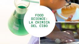 Chimica del cibo
